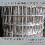 供应200丝电焊网环航网业100%不锈钢网镀锌网