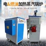 立式桥梁蒸汽养护设备 环保免检纯蒸汽发生器