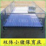 巴中养猪设备厂家长期供应小猪专用保育床双体育肥栏