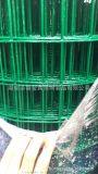 荷蘭網,圈地護欄網,圍雞鐵絲網,浸塑護欄網