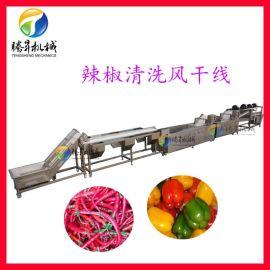 非標定制淨菜加工設備 辣椒清洗風幹生產線