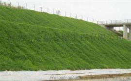矿山修复 客土喷播 边坡绿化施工 边坡绿化施工厂家