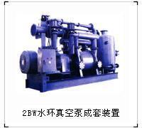 2BW水环真空泵成套装置