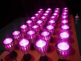 E27植物生长灯 大棚种植补光 led集成植物生长灯