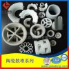 萍鄉科隆直銷優質陶瓷鮑爾環 瓷質鮑爾環現貨