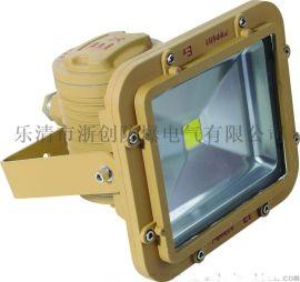 NTC9251/NPNTC9251/NP高效投光燈