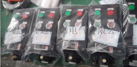 FCZ-A2D2K1防水防尘防腐操作柱