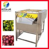 苹果清洗机 毛刷喷淋洗果机
