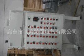 江苏飞策防爆 BM(D)G58防爆动力配电箱