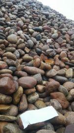 北京直销顺永3-5公分天然铺路鹅卵石
