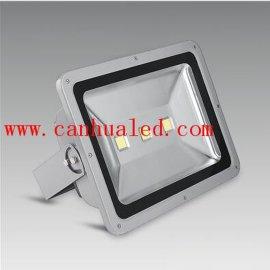 璨华照明150W泛光灯厂家直销-集成LED投光灯-投射灯 用于户外景观照明