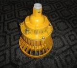 GTB-50W防水防塵防腐燈具