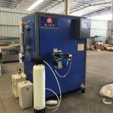 蒸汽加熱設備配套設備 多功能蒸汽發生器