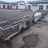 G 香葱清洗机 自动化喷淋水浴洗葱机 洗葱生产线