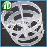 净化塔多孔悬浮鲍尔环 塑料多面空心球 型号全