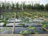 HDPE養殖防滲膜 防滲土工膜 廠家批發