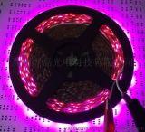 超小迷你字 异形灯具专用S型柔性灯带