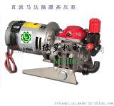 意大利12V直流马达M20DC 2缸隔膜高压泵
