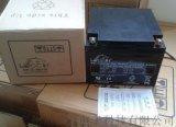 理士免維護鉛酸UPS蓄電池12V24AH