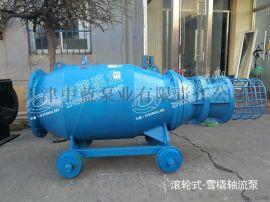 防汛应急排水雪橇式轴流泵