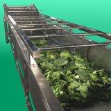 全自动连续式果蔬清洗设备 大型气泡蔬菜清洗机