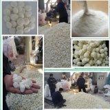 膩子粉粘合劑 玉米預糊化澱粉 木薯預糊化澱粉