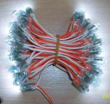 LED广告字灯串(F3SS)