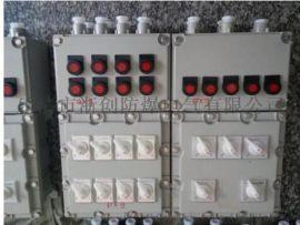 防爆照明动力配电箱防爆控制箱带防雨罩