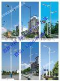 山东路灯杆 灯杆 路灯杆生产供应厂家 路杆灯