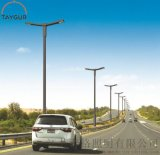 6米LED照明,道路照明灯杆,太阳能路灯,泰格照明