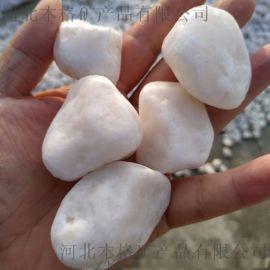 河北 石家庄优质供应商 供应白色鹅卵石