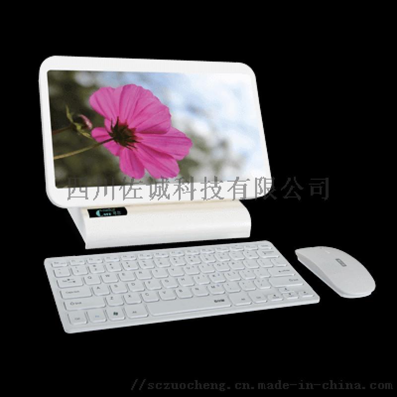 数码电子阴道镜 DKY1600型(便携)