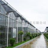生態智慧溫室大棚設計 水果智慧大棚骨架 德源溫室