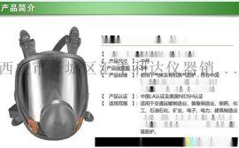 西安哪里有 防毒面具咨询13891913067