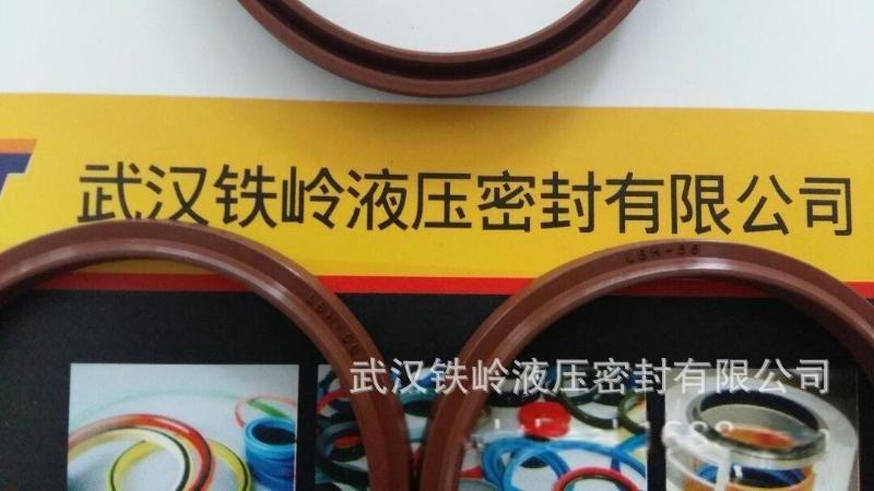武汉厂家直销耐高温 FKM 氟胶DHS63x71x8、LBH 、SDR防尘圈