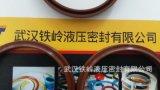 武漢廠家直銷耐高溫 FKM 氟膠DHS63x71x8、LBH 、SDR防塵圈