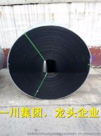 普通输送带,涤棉帆布,650-3000宽,一川胶带,龙头企业!