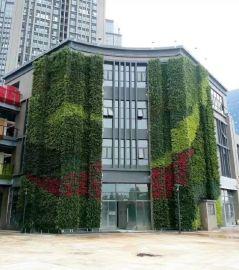 东莞植物墙 仿真花植物墙 垂直绿化 东莞新雯仿真植物绿色植物墙供应商
