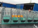 养猪设备母猪复合定位栏热镀锌管限位栏