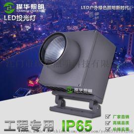 璨华照明新款投光灯25W40W60W户外投射灯