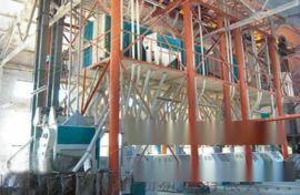 全自动面粉机 80吨全自动面粉机 全自动面粉机