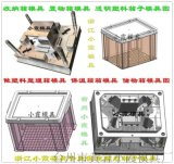 爲你打造蔬菜筐模具塑膠保溫箱模具開模