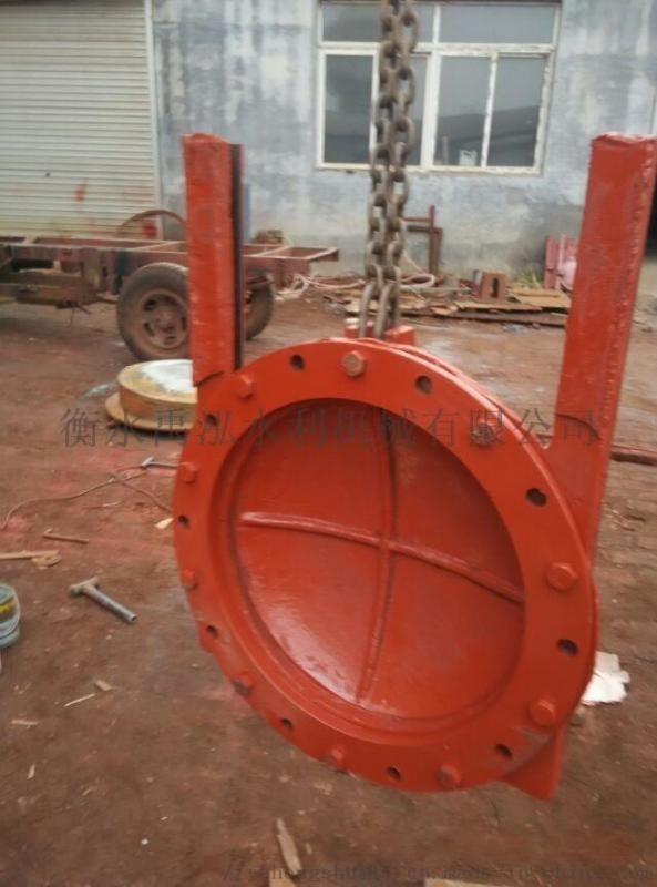 铸铁方拍门 出水口防倒灌玻璃钢拍门 水利拍门闸门 螺杆式启闭机