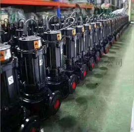 管道排污泵,不阻塞管道式排污泵,立式排污泵机封型