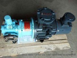 圆弧齿轮泵不锈钢圆弧齿轮泵耐腐蚀无泄漏找泊头艾克泵业