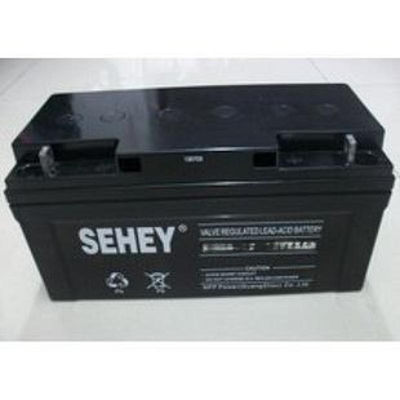 SEHEY西力SH65-12 12V65ah蓄电池