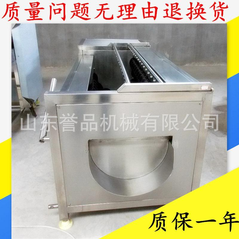 厂家供应猪头猪蹄毛辊清洗机 蔬菜水果全自动毛刷清洗机多少钱