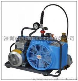 供应德国宝华呼吸充气泵BC163099B 宝亚充气泵厂家直销