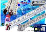 LED 铝槽硬灯条 5050 60灯1米 带铝槽线条灯 厂价直销