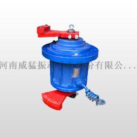 河南威猛-立式振动电机, 电机设备